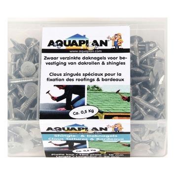 Aquaplan daknagels 500 g