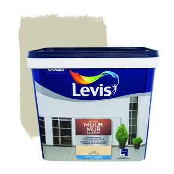 Peinture Mur Extérieur Levis satin argile 5 L