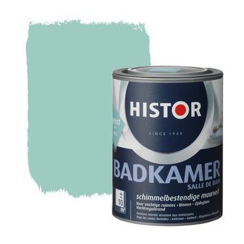 Histor muurverf badkamer geest 1 liter | Muurverf & plafondverf ...