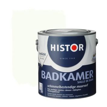 Histor muurverf badkamer RAL 9010 gebroken wit 2,5 liter | Muurverf ...