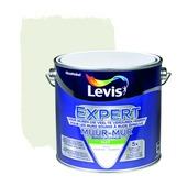 Levis  expert mur 2,5l 4120 travertijn