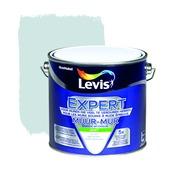 Levis  expert mur 2,5l 6230 gletsjerkei