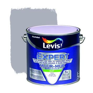 Levis expert mur  2,5l 9431 amethyste