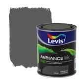 Levis Ambiance lak mat magma 750 ml