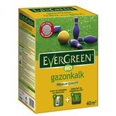 Evergreen gazonkalk 40 m²