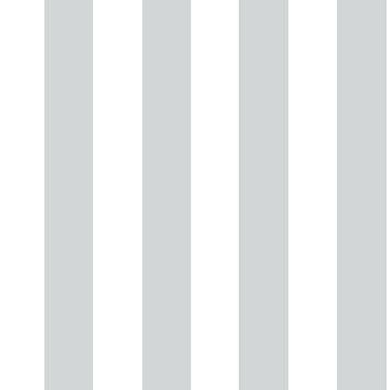 Vliesbehang Strepen zilver 100100