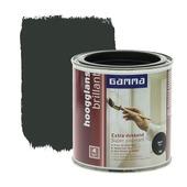 GAMMA lak extra dekkend hoogglans zwart 250 ml