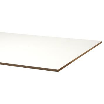 Mdf plaat overschilderbaar met lakdraagfolie PEFC 18 mm 244X122 cm