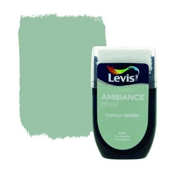 Testeur peinture Ambiance mur mat Levis 30 ml 5450 Eucalyptus