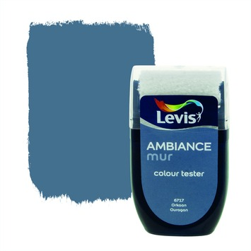 Levis Ambiance muur mat tester 30 ml 6717 Orkaan