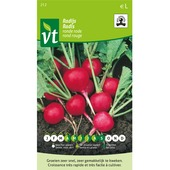 Persil  rouge rond bio VT 6g