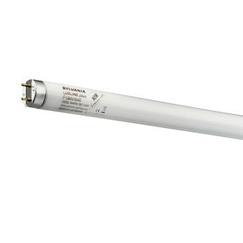 Tube TL T8 Sylvania 865 G13 18 W 1300 Lm 6500 K