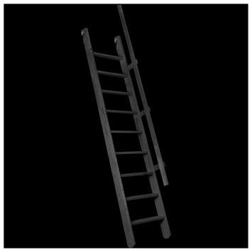 Molenaarstrap Pivot MSP-C 55x300 cm zwart
