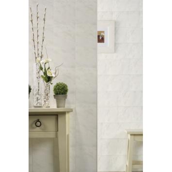 Lambris en PVC Cottage Grosfillex 5,46 m² gris mat