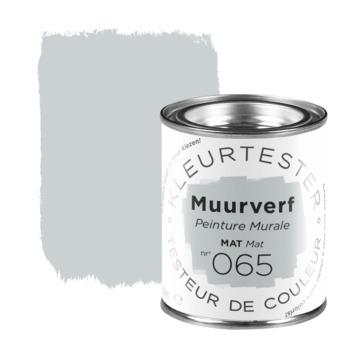Testeur de couleur peinture murale mate 100 ml n° 065