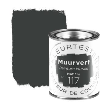 Kleurtester muurverf mat 100 ml nr. 117 grammafoon