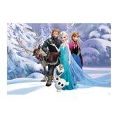 Fotobehang Frozen (70-571)