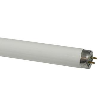 Philips TL buis T8 18W 1350 lumen 4100 kelvin koud wit 60cm
