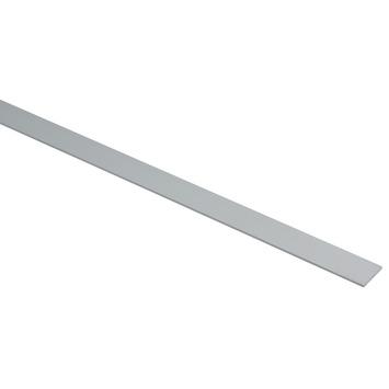 Essentials plat profiel 20x2 mm 1000 mm aluminium zilver