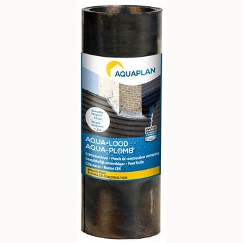 Plomb Aquaplan 25 cm 1,5 m