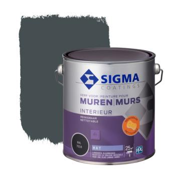 Sigma muurverf reinigbaar mat 2,5 L RAL 7016