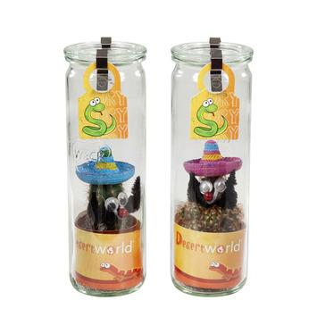 Mix désert 2 cactus en bouteille en verre