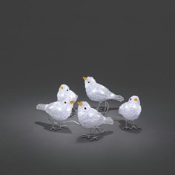 Lumières de Noël oiseaux avec LED blanc froid pour l'extérieur