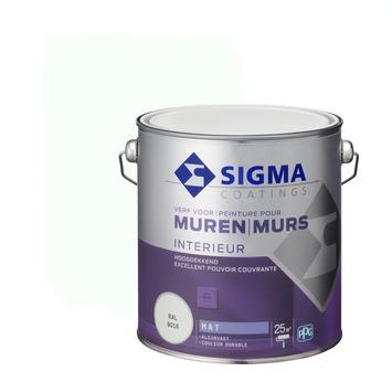 Sigma muurverf dekkend mat 2,5 L RAL 9016
