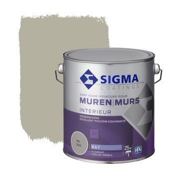 Sigma muurverf dekkend mat 2,5 L RAL 7032