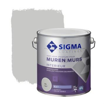 Sigma muurverf dekkend mat 2,5 L RAL 7047