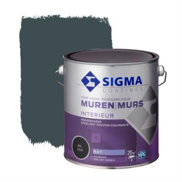 Sigma peinture murale couvrante mate 2,5 L RAL 7016