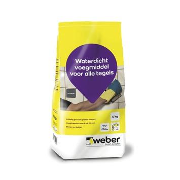Mortier de jointoyage Weber 4 kg gris clair
