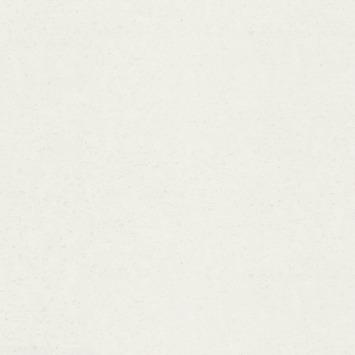 Papier peint intissé Rauhfaser RFV5168 15m x 0,53cm