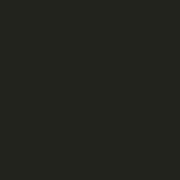 Film pare-soleil Dc-fix noir 337-5001 200x90 cm