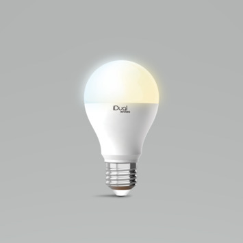 iDual White E27 lamp