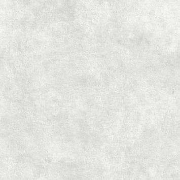 Papier peint intissé béton ciré gris clair 106988