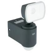 Applique LED extérieure avec détecteur de mouvement RF1.1 GP safeguard