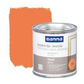 GAMMA loodvrije menie zijdeglans oranje 250 ml