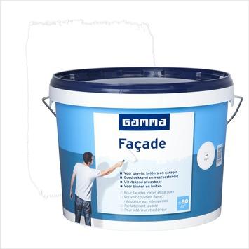 Gamma Facadeverf Mat Wit 10 L Gamma Be