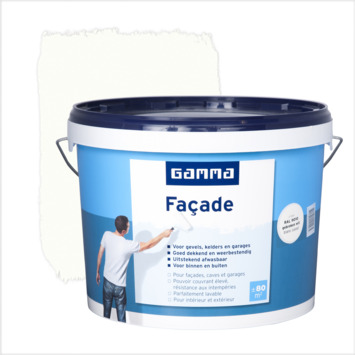 Façade Gamma Mat Ral9010 Blanc Cassé 10 L