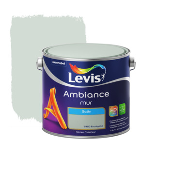 Levis Ambiance muurverf zijdeglans eucalyptus 2,5 L
