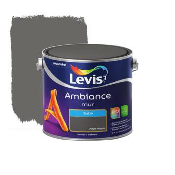 Peinture Ambiance Mur Levis satin magma 2,5 L