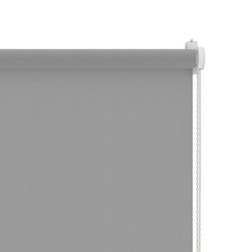 GAMMA rolgordijn draai/kiepraam uni lichtdoorlatend licht grijs 5731 65x160 cm