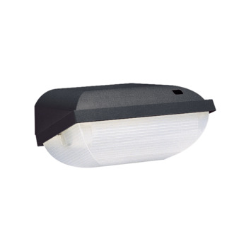 Philips buitenlamp zwart met dag/nacht sensor