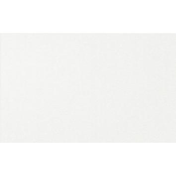 Wandtegel White Glossy 25X40cm 1,2m² per doos