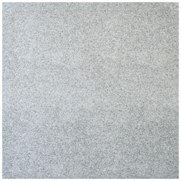 Terrastegel keramisch Hematit grijs 60x60 cm 2 stuks per doos a 0,72 m2