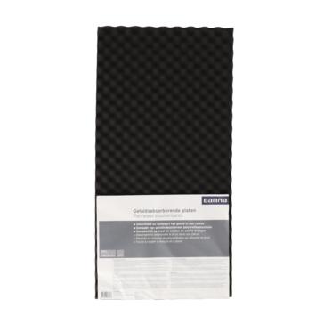 GAMMA geluidsabsorberende plaat zwart 100x50x3cm 2 stuks