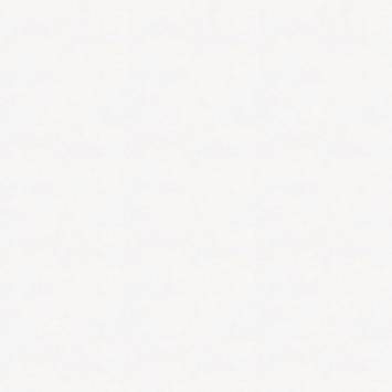 Renovatievlies overschilderbaar uni wit 7850 130g - 50m