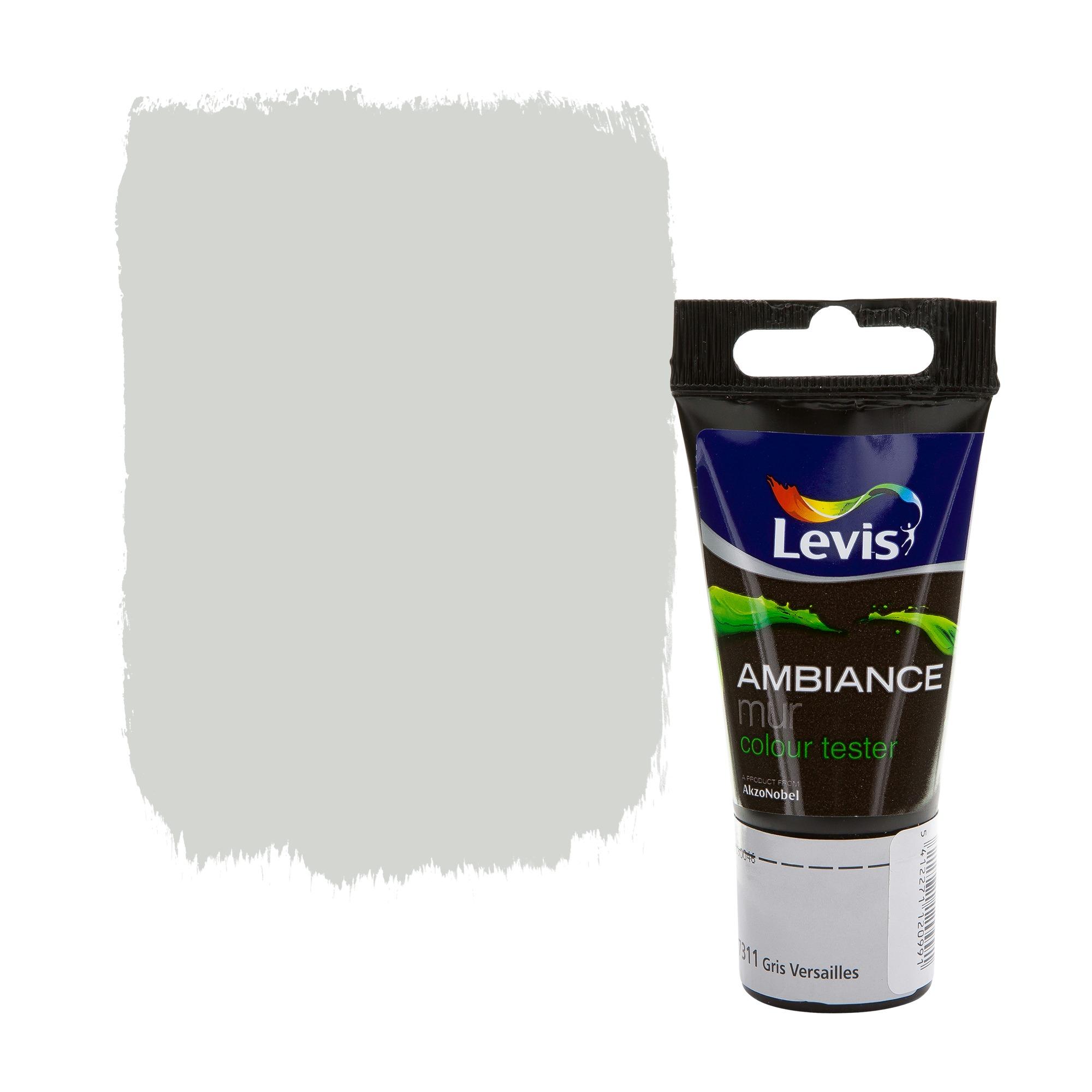 Testeur peinture ambiance mur levis extra mat gris versailles 40 ml peinture mur plafond for Peinture gris brillant mur