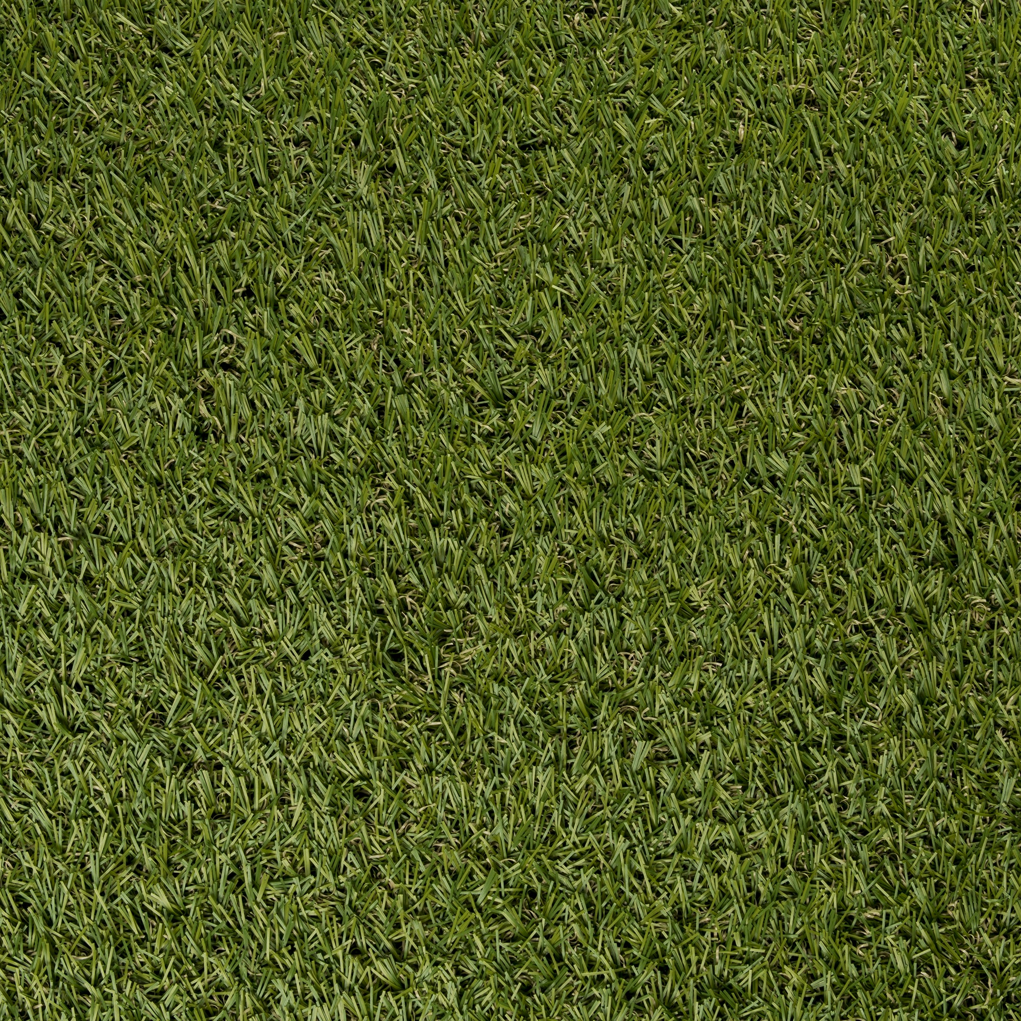Gazon artificiel selectgrass 200x300 cm gazon Entretien gazon synthetique